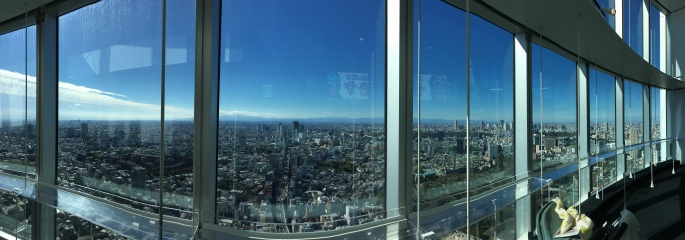 Tokyo Roppongi city view panorama with stroller